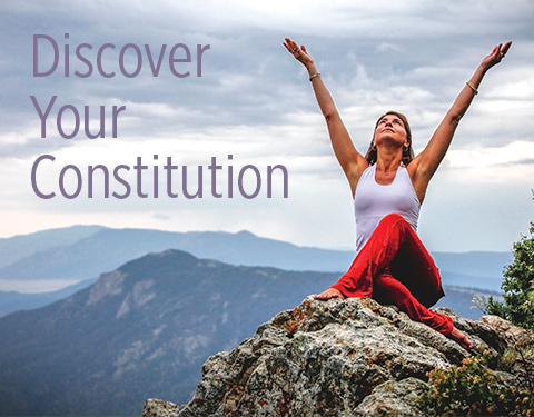 Discover Your Constitution
