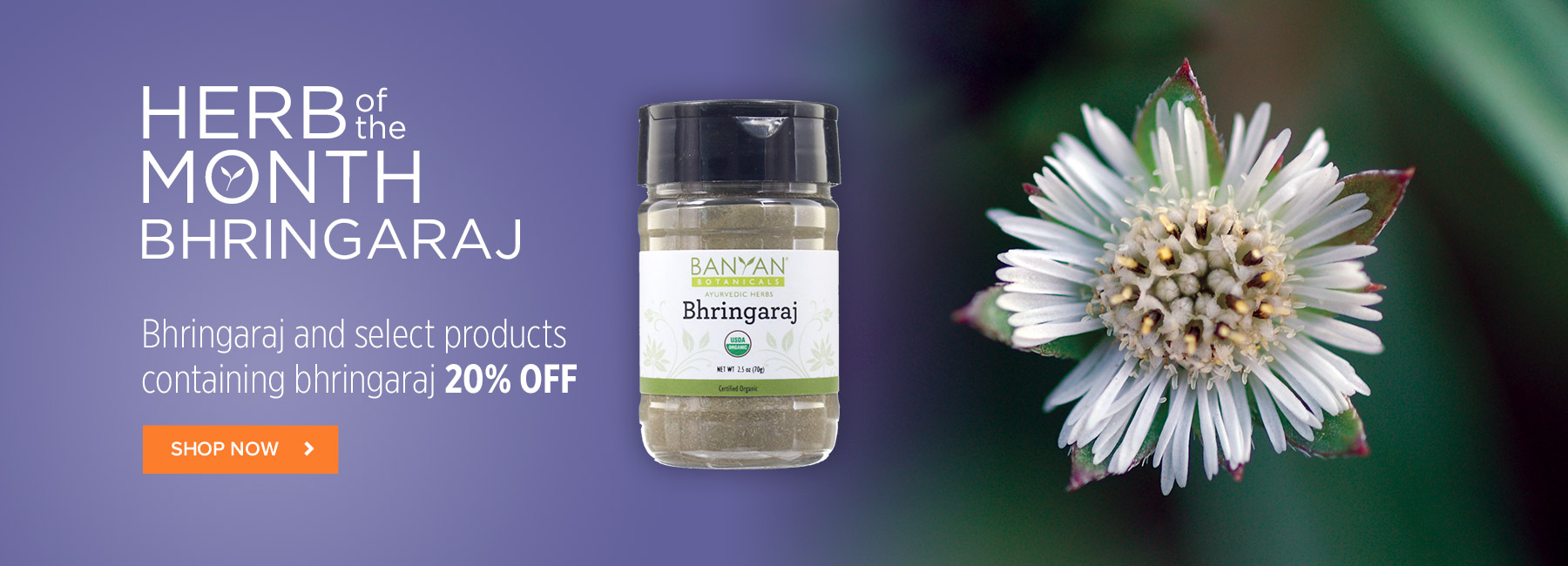 Bhringaraj and select products containing bhringaraj 20% OFF!
