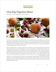 One-Day Digestive Reset PDF