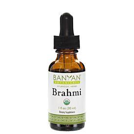 Brahmi/Gotu Kola liquid extract