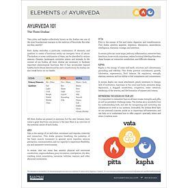 Elements of Ayurveda 101—Part 3