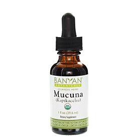 Mucuna/Kapikacchu liquid extract